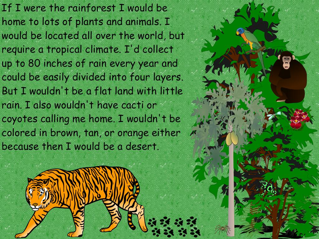 Rainforest and desert biome comparison in If,But style