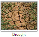 Drought tile