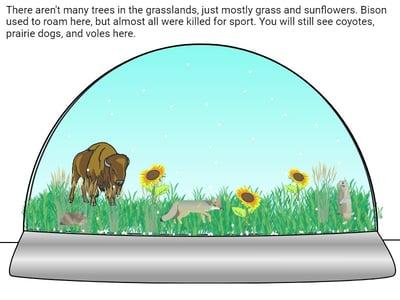 wixie-sample-snow-globe-grasslands